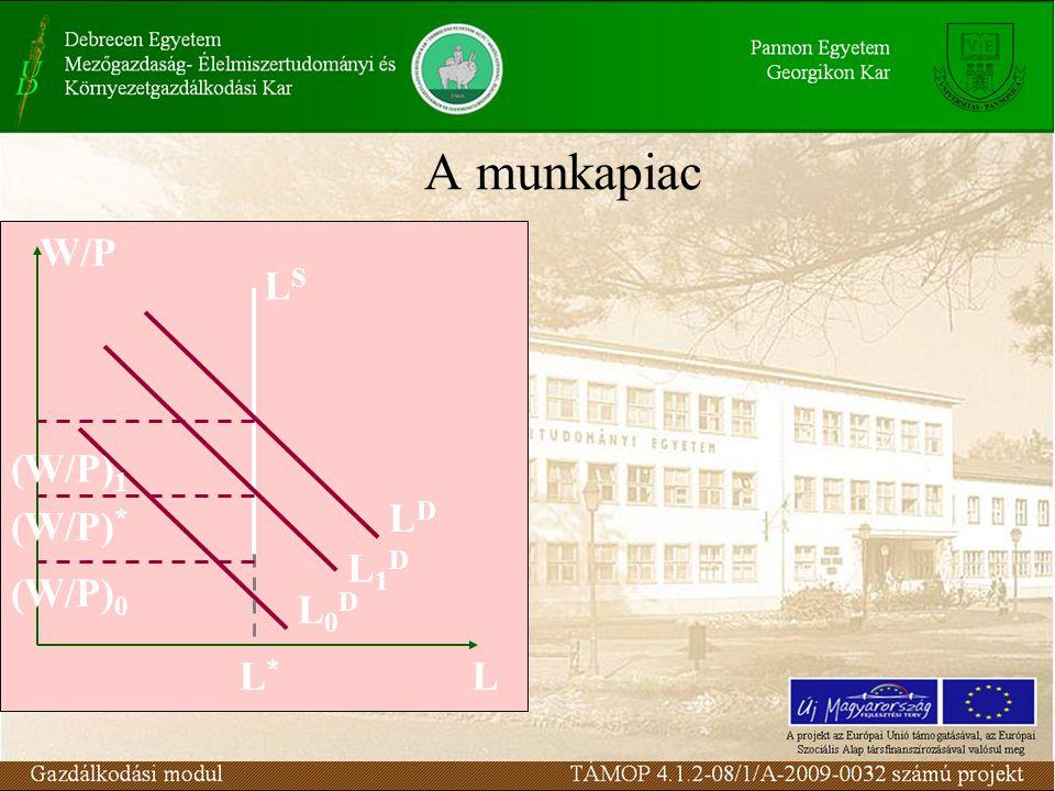 A munkapiac W/P LSLS L1DL1D L0DL0D LDLD LL*L* (W/P) 0 (W/P) * (W/P) 1