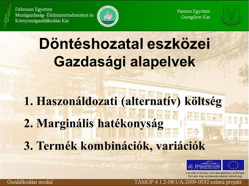 Döntéshozatal eszközei Gazdasági alapelvek 1.Haszonáldozati (alternatív) költség 2.Marginális hatékonyság 3.Termék kombinációk, variációk