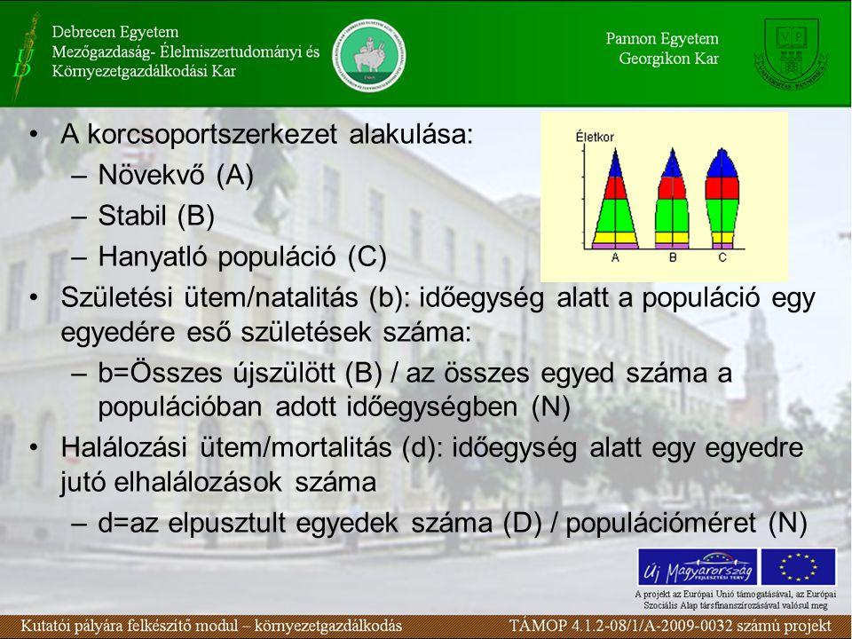 A korcsoportszerkezet alakulása: –Növekvő (A) –Stabil (B) –Hanyatló populáció (C) Születési ütem/natalitás (b): időegység alatt a populáció egy egyedé