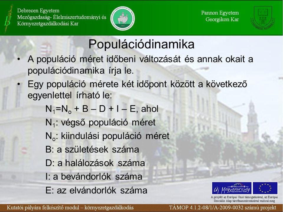 Populációdinamika A populáció méret időbeni változását és annak okait a populációdinamika írja le. Egy populáció mérete két időpont között a következő