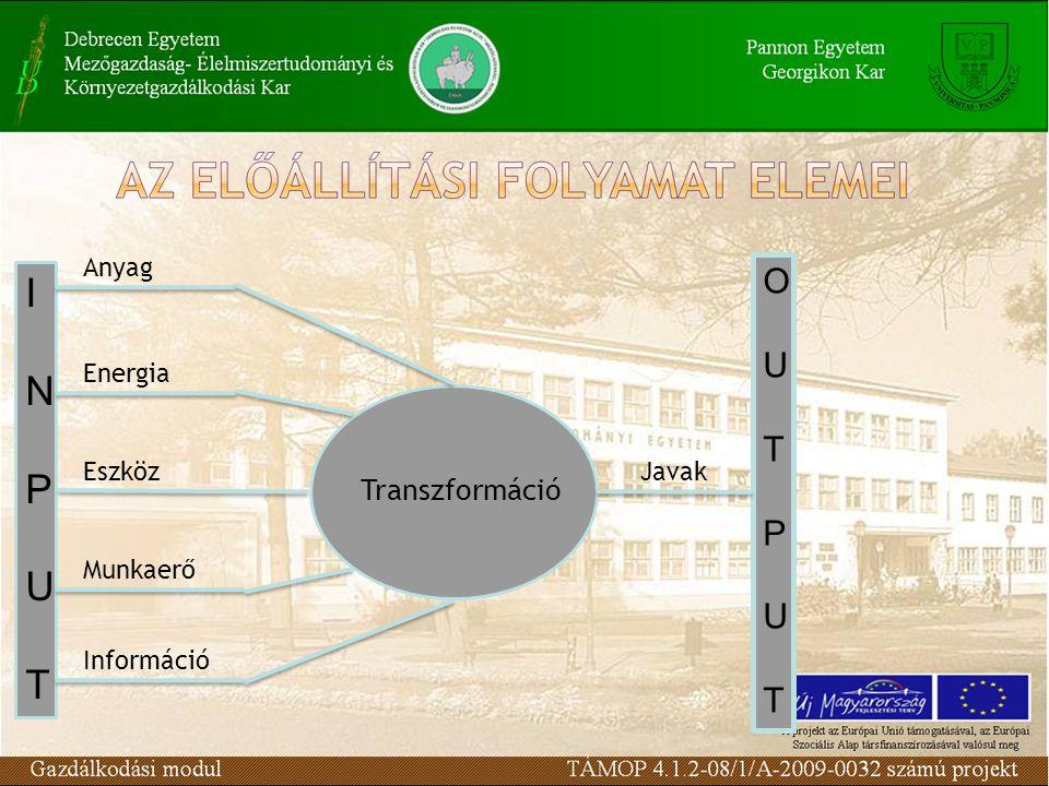 INPUTINPUT Transzformáció Anyag Energia Munkaerő Eszköz Információ OUTPUTOUTPUT Javak