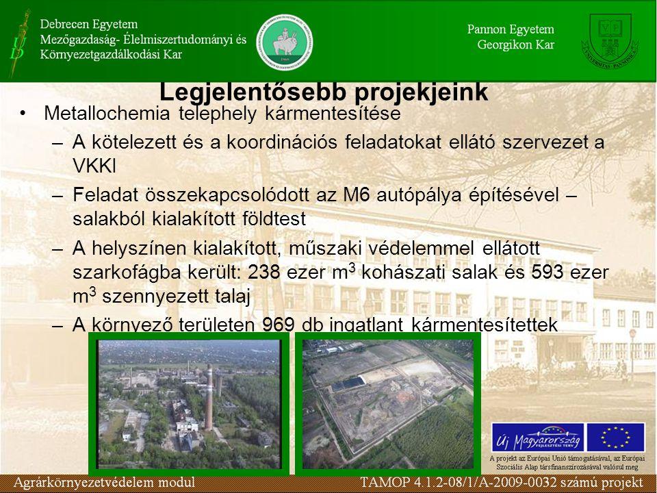 Legjelentősebb projekjeink Metallochemia telephely kármentesítése –A kötelezett és a koordinációs feladatokat ellátó szervezet a VKKI –Feladat összekapcsolódott az M6 autópálya építésével – salakból kialakított földtest –A helyszínen kialakított, műszaki védelemmel ellátott szarkofágba került: 238 ezer m 3 kohászati salak és 593 ezer m 3 szennyezett talaj –A környező területen 969 db ingatlant kármentesítettek