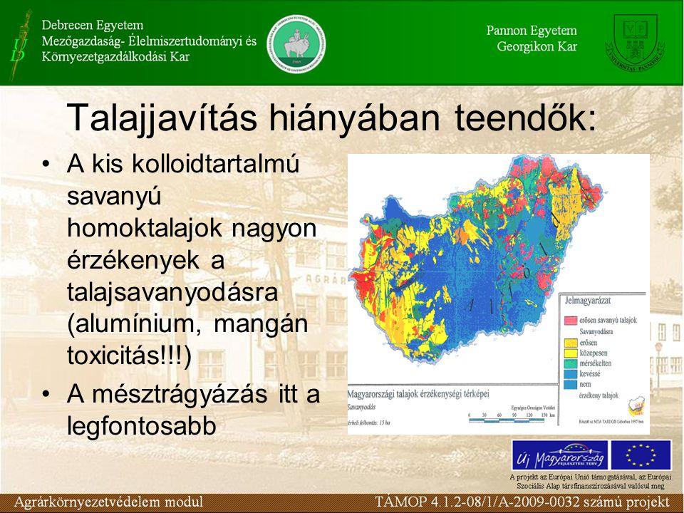 Talajjavítás hiányában teendők: A kis kolloidtartalmú savanyú homoktalajok nagyon érzékenyek a talajsavanyodásra (alumínium, mangán toxicitás!!!) A mésztrágyázás itt a legfontosabb