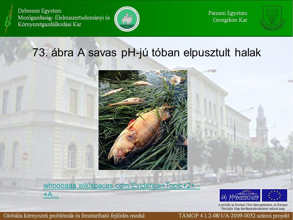 73. ábra A savas pH-jú tóban elpusztult halak whoooaaa.wikispaces.com/Evidence+Topic+2+-- +A...