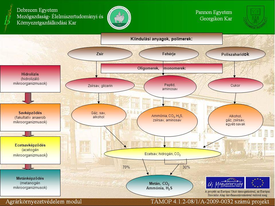 Hidrolízis (hidrolizáló mikroorganizmusok) Savképződés (fakultatív anaerob mikroorganizmusok) Ecetsavképződés (acetogén mikroorganizmusok ) Metánképződés (metanogén mikroorganizmusok) Kiindulási anyagok, polimerek : ZsírFehérje Poliszaharid ok Zsírsav, glicerin Oligomerek, monomerek: Peptid, aminosav Cukor Gáz, sav, alkohol Ammónia, CO 2, H 2 S, zsírsav, aminosav Alkohol, gáz, zsírsav, egyéb savak Metán, CO 2 Ammónia, H 2 S Ecetsav; hidrogén, CO 2 30%70%