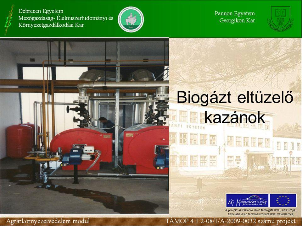 Biogázt eltüzelő kazánok