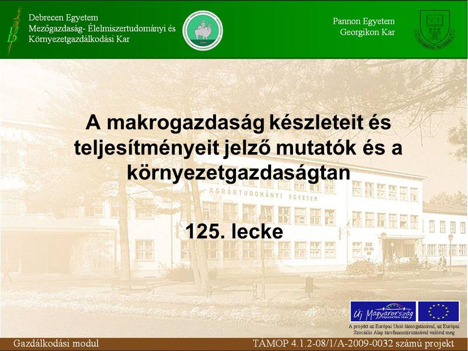 A makrogazdaság készleteit és teljesítményeit jelző mutatók és a környezetgazdaságtan 125. lecke
