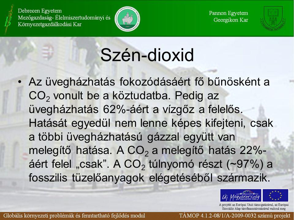 Szén-dioxid Az üvegházhatás fokozódásáért fő bűnösként a CO 2 vonult be a köztudatba.