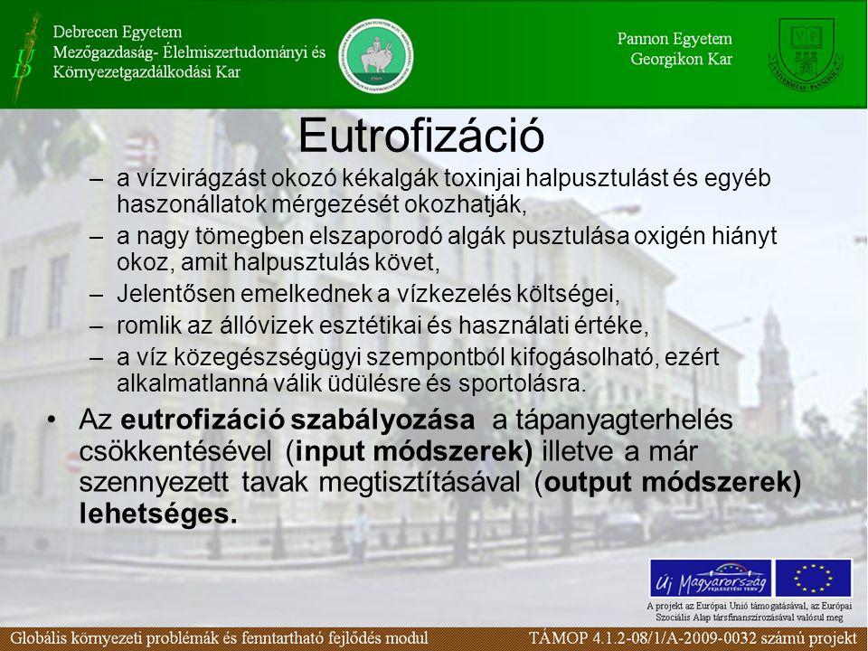 Eutrofizáció –a vízvirágzást okozó kékalgák toxinjai halpusztulást és egyéb haszonállatok mérgezését okozhatják, –a nagy tömegben elszaporodó algák pusztulása oxigén hiányt okoz, amit halpusztulás követ, –Jelentősen emelkednek a vízkezelés költségei, –romlik az állóvizek esztétikai és használati értéke, –a víz közegészségügyi szempontból kifogásolható, ezért alkalmatlanná válik üdülésre és sportolásra.