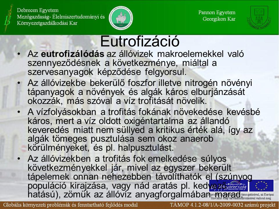 Eutrofizáció Az eutrofizálódás az állóvizek makroelemekkel való szennyeződésnek a következménye, miáltal a szervesanyagok képződése felgyorsul.