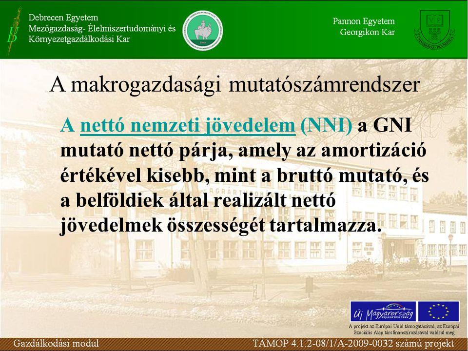 A nettó nemzeti jövedelem (NNI) a GNI mutató nettó párja, amely az amortizáció értékével kisebb, mint a bruttó mutató, és a belföldiek által realizált nettó jövedelmek összességét tartalmazza.