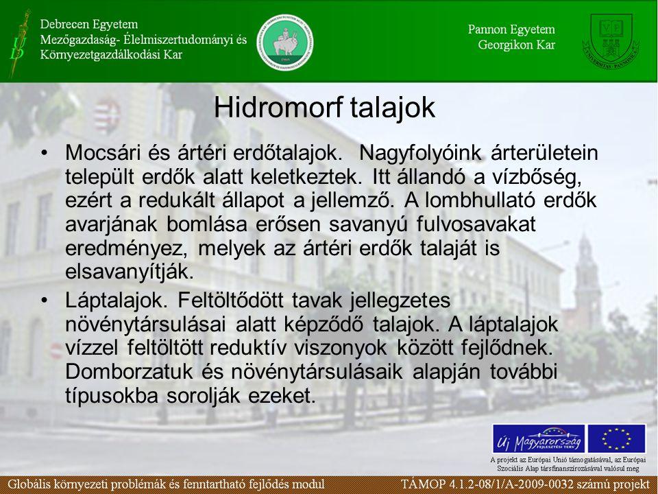 Hidromorf talajok Mocsári és ártéri erdőtalajok. Nagyfolyóink árterületein települt erdők alatt keletkeztek. Itt állandó a vízbőség, ezért a redukált