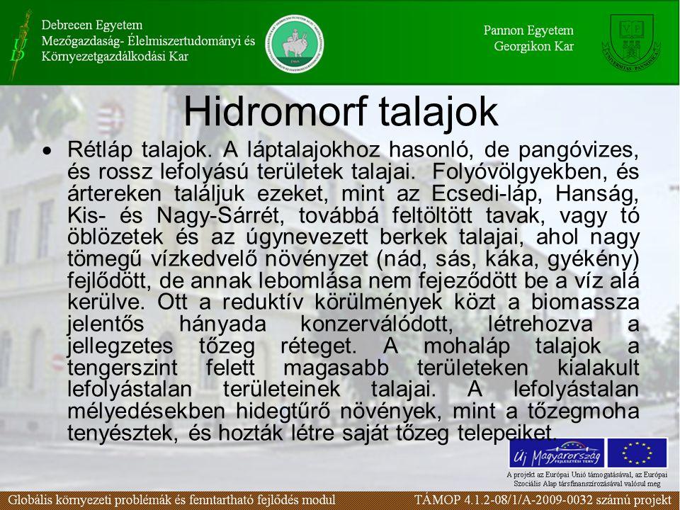 Hidromorf talajok  Rétláp talajok. A láptalajokhoz hasonló, de pangóvizes, és rossz lefolyású területek talajai. Folyóvölgyekben, és ártereken találj