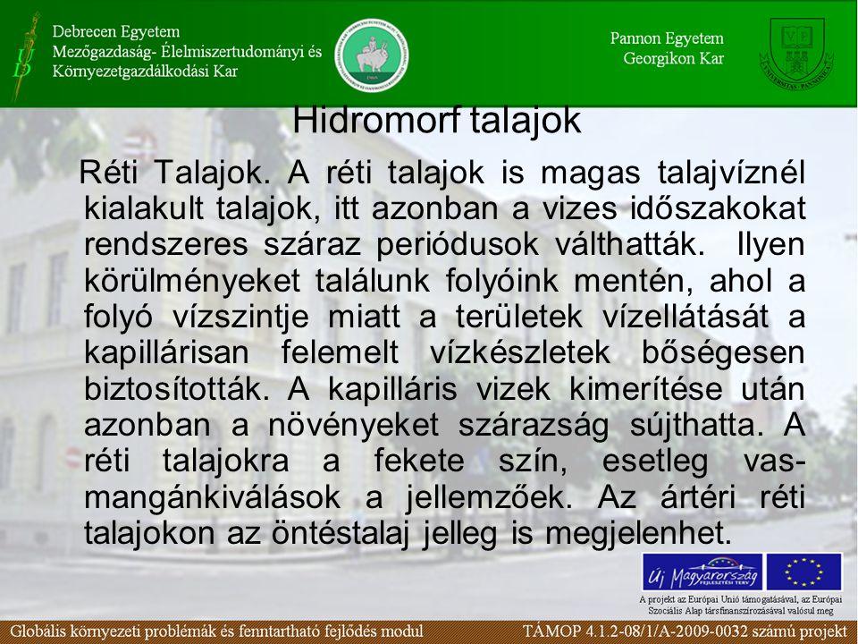 Hidromorf talajok Réti Talajok.