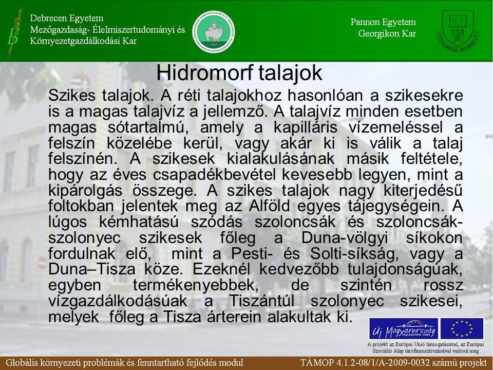 Hidromorf talajok Szikes talajok. A réti talajokhoz hasonlóan a szikesekre is a magas talajvíz a jellemző. A talajvíz minden esetben magas sótartalmú,