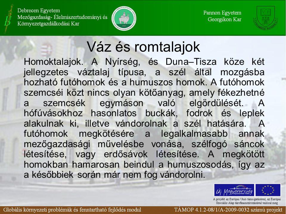 Váz és romtalajok Homoktalajok. A Nyírség, és Duna–Tisza köze két jellegzetes váztalaj típusa, a szél által mozgásba hozható futóhomok és a humuszos h
