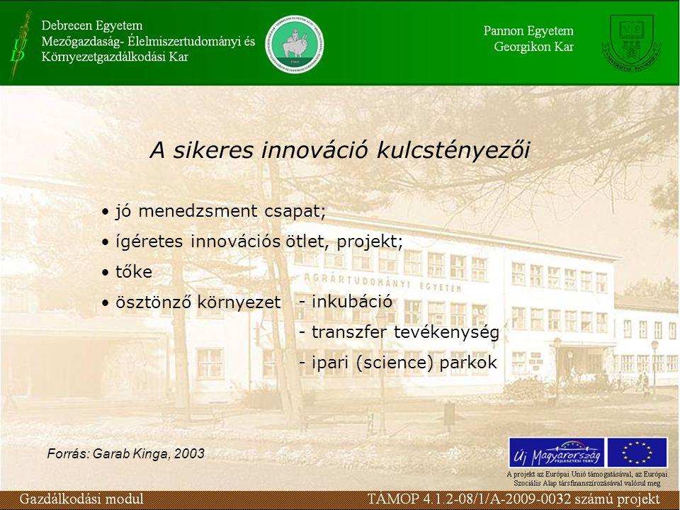 jó menedzsment csapat; ígéretes innovációs ötlet, projekt; tőke ösztönző környezet A sikeres innováció kulcstényezői - inkubáció - transzfer tevékenys