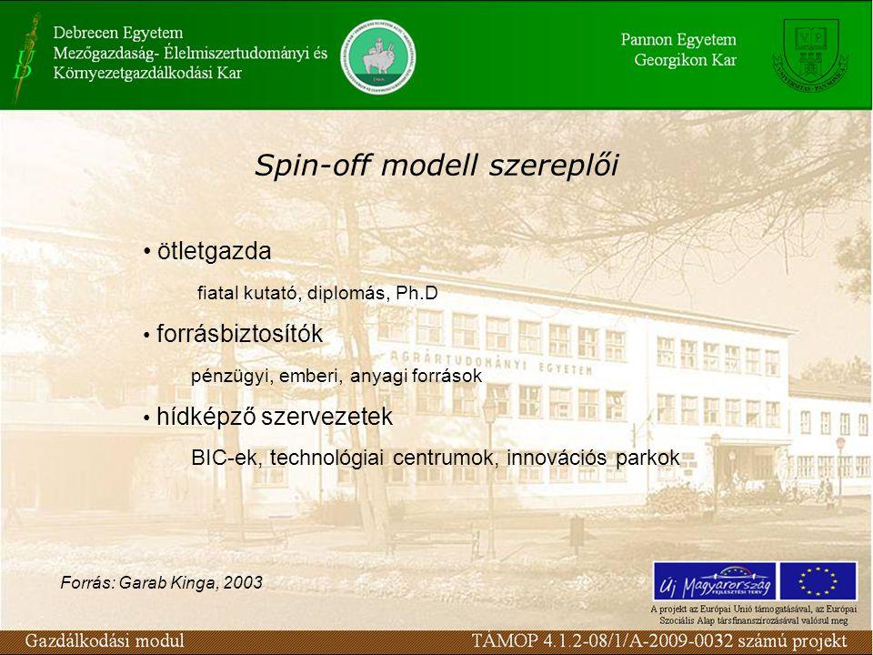 Spin-off modell szereplői ötletgazda fiatal kutató, diplomás, Ph.D forrásbiztosítók pénzügyi, emberi, anyagi források hídképző szervezetek BIC-ek, tec