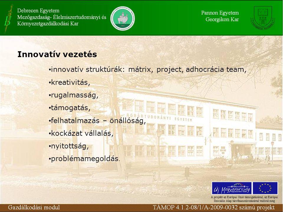 Spin-off modell szereplői ötletgazda fiatal kutató, diplomás, Ph.D forrásbiztosítók pénzügyi, emberi, anyagi források hídképző szervezetek BIC-ek, technológiai centrumok, innovációs parkok Forrás: Garab Kinga, 2003