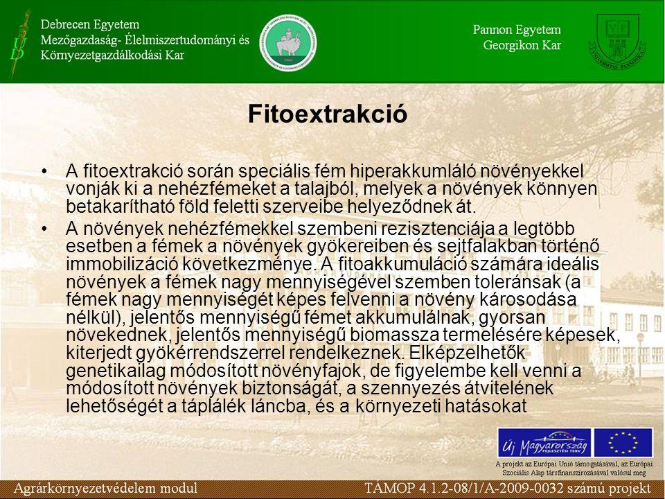 A fitoextrakció során speciális fém hiperakkumláló növényekkel vonják ki a nehézfémeket a talajból, melyek a növények könnyen betakarítható föld feletti szerveibe helyeződnek át.