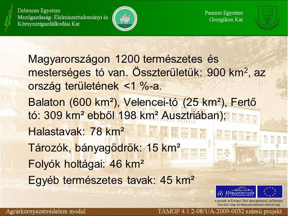 Magyarországon 1200 természetes és mesterséges tó van. Összterületük: 900 km 2, az ország területének <1 %-a. Balaton (600 km²), Velencei-tó (25 km²),