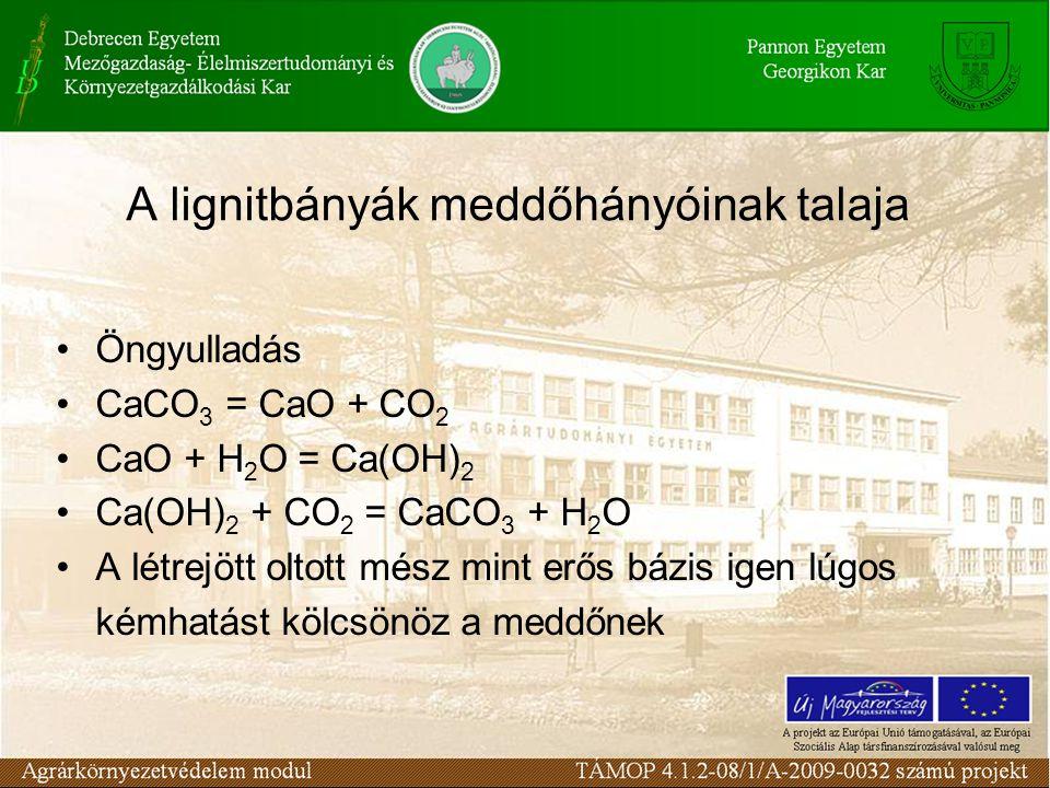 A lignitbányák meddőhányóinak talaja Öngyulladás CaCO 3 = CaO + CO 2 CaO + H 2 O = Ca(OH) 2 Ca(OH) 2 + CO 2 = CaCO 3 + H 2 O A létrejött oltott mész mint erős bázis igen lúgos kémhatást kölcsönöz a meddőnek