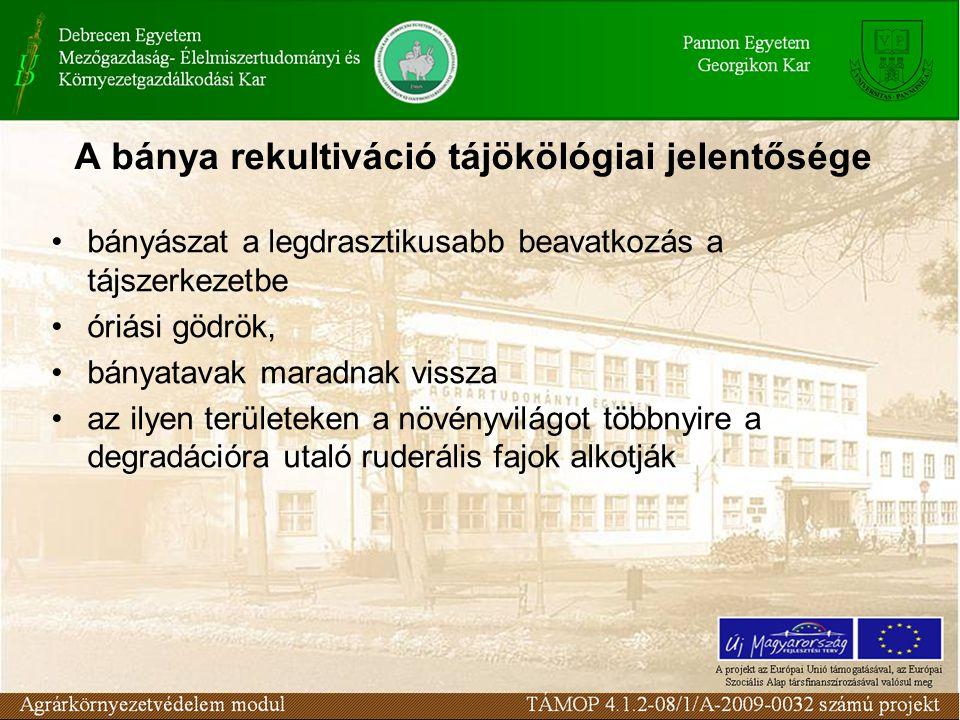 Vörösiszap-tárolás Magyarországon veszélyes hulladék Híg zagyos szállítás Lerakással szembeni követelmények - hidrológiai és földtani vizsgálatok - rekultiváció - monitoringrendszer - tájképi hatás