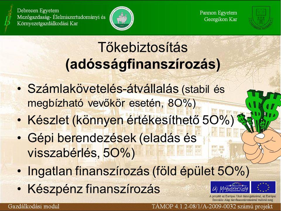 Tőkebiztosítás (adósságfinanszírozás) Számlakövetelés-átvállalás (stabil és megbízható vevőkör esetén, 8O%) Készlet (könnyen értékesíthető 5O%) Gépi berendezések (eladás és visszabérlés, 5O%) Ingatlan finanszírozás (föld épület 5O%) Készpénz finanszírozás