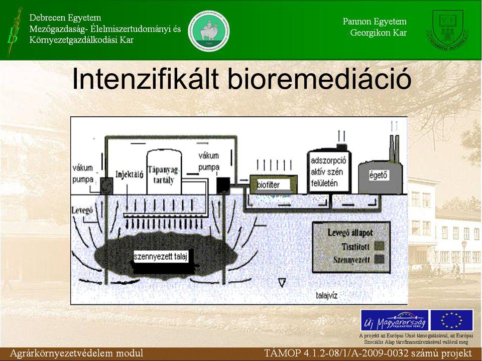 A bioremediáció során a talajba jutott szerves szennyezőanyagokat mikroorganizmusok segítségével lebontják, és ártalmatlan anyagokká (pl.
