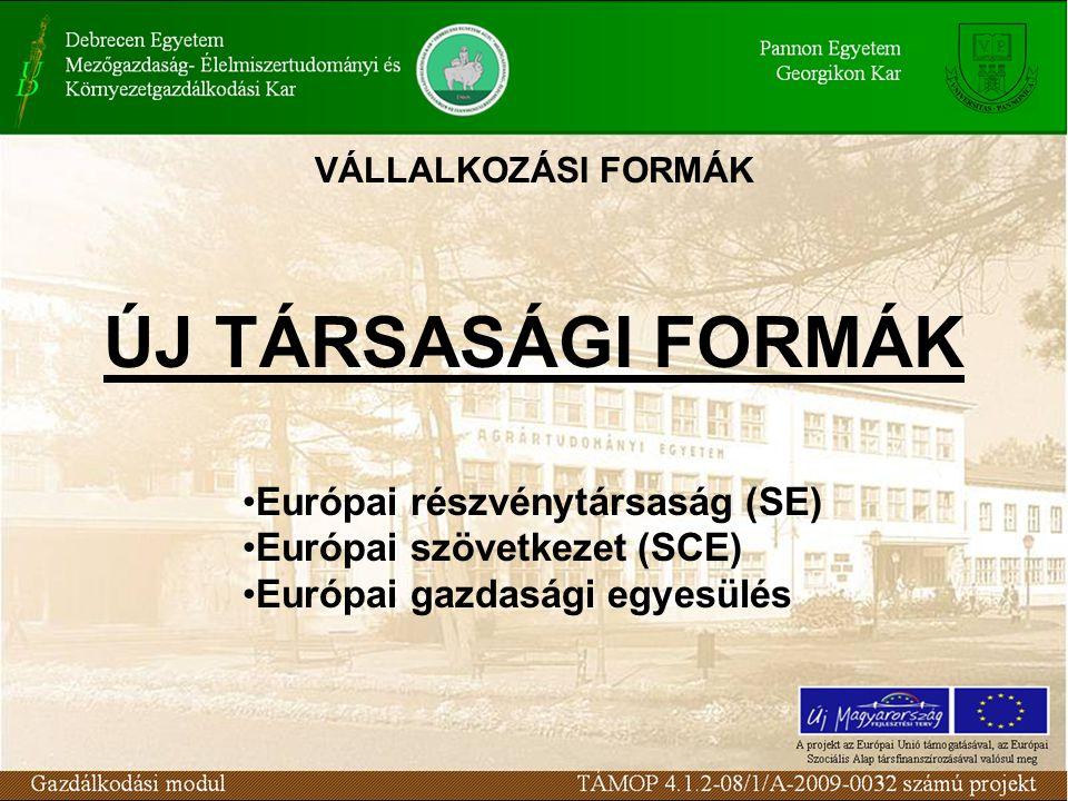 VÁLLALKOZÁSI FORMÁK ÚJ TÁRSASÁGI FORMÁK Európai részvénytársaság (SE) Európai szövetkezet (SCE) Európai gazdasági egyesülés