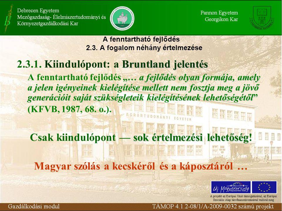 """A fenntartható fejlődés 2.3. A fogalom néhány értelmezése Bruntland jelentés 2.3.1. Kiindulópont: a Bruntland jelentés """"… a fejlődés olyan formája, am"""