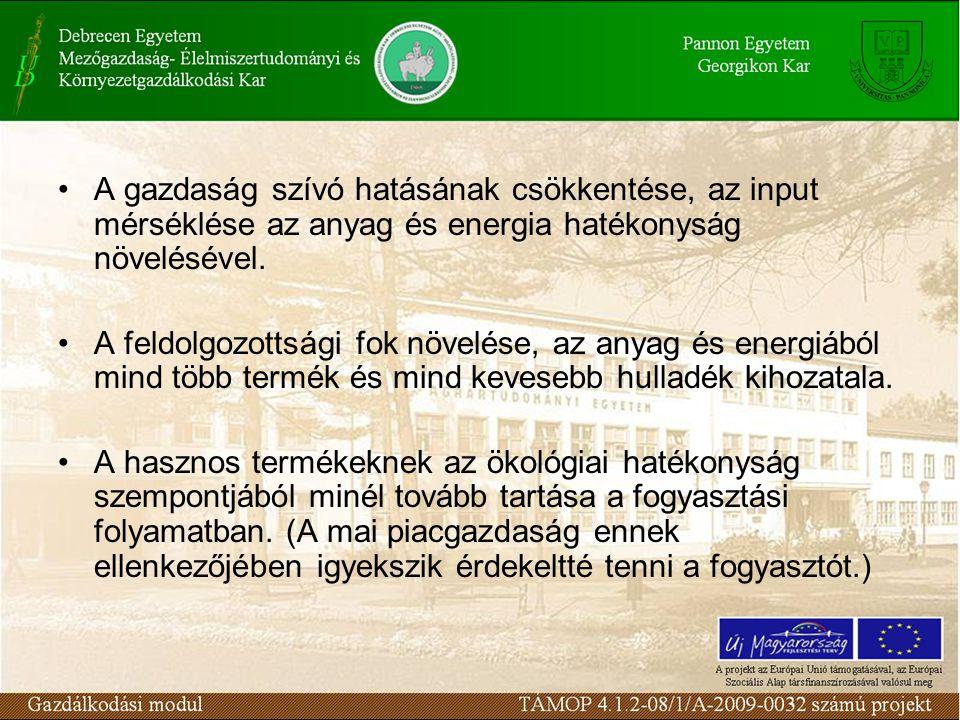 A gazdaság szívó hatásának csökkentése, az input mérséklése az anyag és energia hatékonyság növelésével. A feldolgozottsági fok növelése, az anyag és