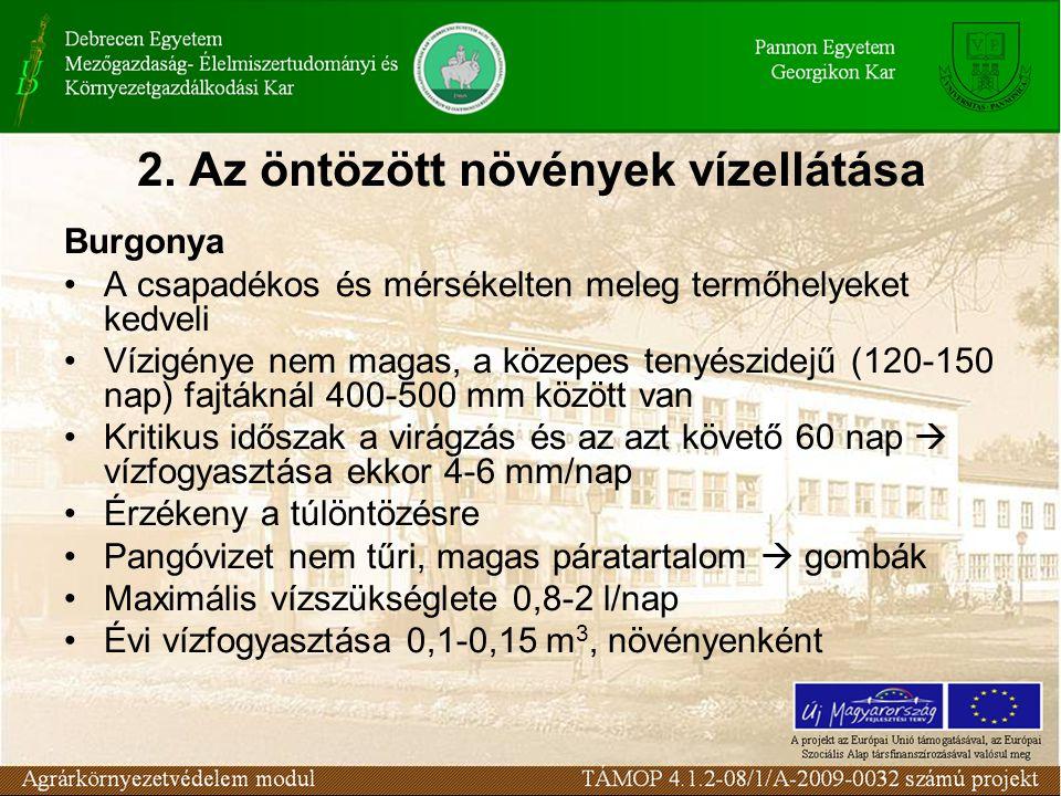 2. Az öntözött növények vízellátása Burgonya A csapadékos és mérsékelten meleg termőhelyeket kedveli Vízigénye nem magas, a közepes tenyészidejű (120-
