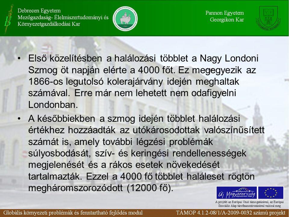Első közelítésben a halálozási többlet a Nagy Londoni Szmog öt napján elérte a 4000 főt. Ez megegyezik az 1866-os legutolsó kolerajárvány idején megha