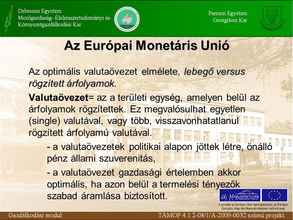 Az Európai Monetáris Unió lebegő versus rögzített árfolyamok.