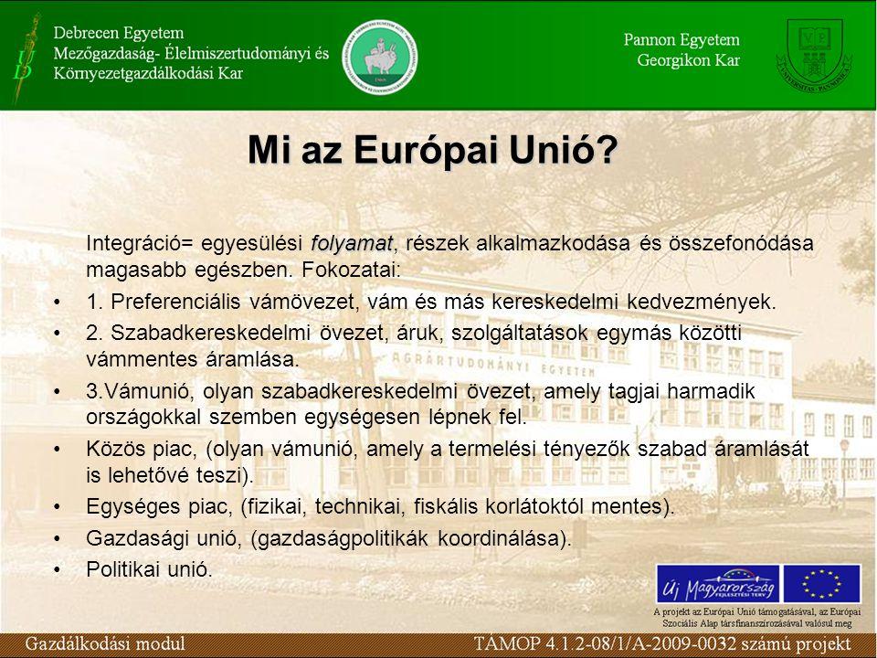 A gazdasági és a politikai unió határán álló regionális integráció, amelyben a tagállamok nemzeti szuverenitásuk számos elemét megőrizték, de amelyben számos elemről le is mondtak (pl.