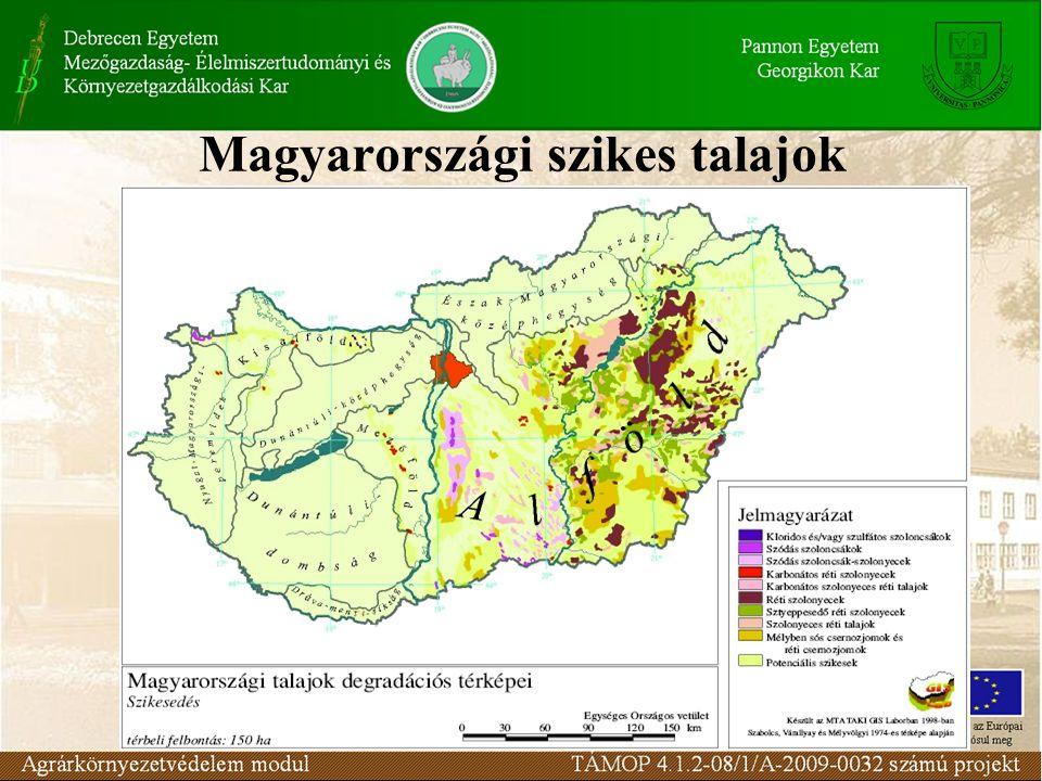Magyarországi szikes talajok