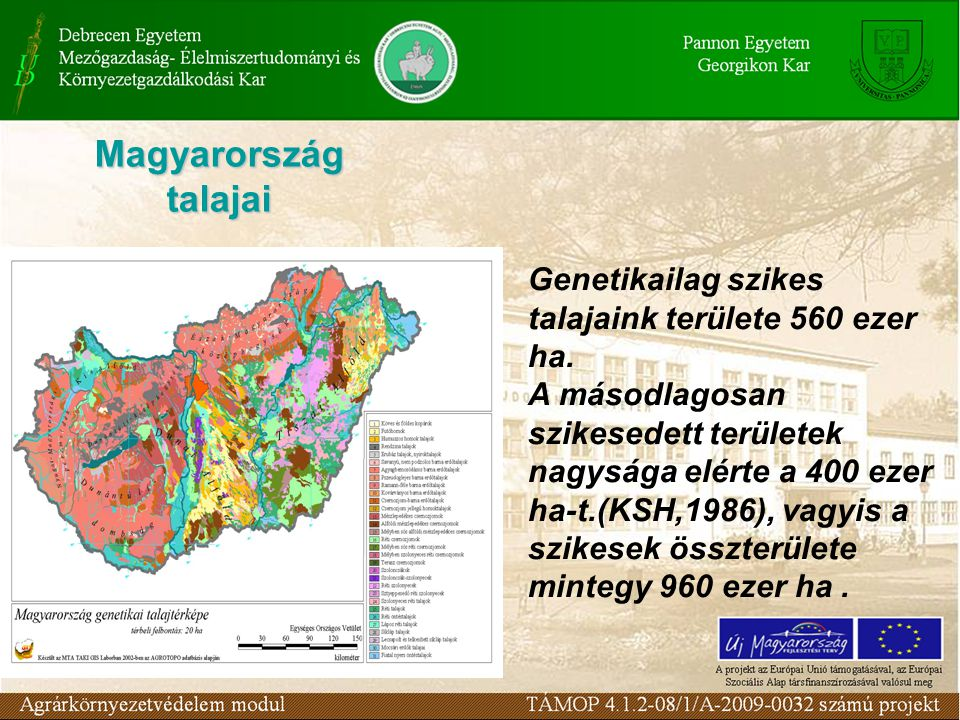 Magyarország talajai Genetikailag szikes talajaink területe 560 ezer ha. A másodlagosan szikesedett területek nagysága elérte a 400 ezer ha-t.(KSH,198