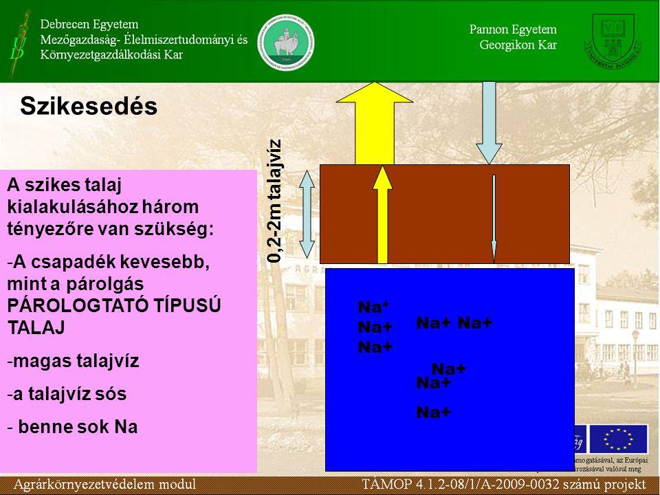 A szikes talaj kialakulásához három tényezőre van szükség: -A csapadék kevesebb, mint a párolgás PÁROLOGTATÓ TÍPUSÚ TALAJ -magas talajvíz -a talajvíz