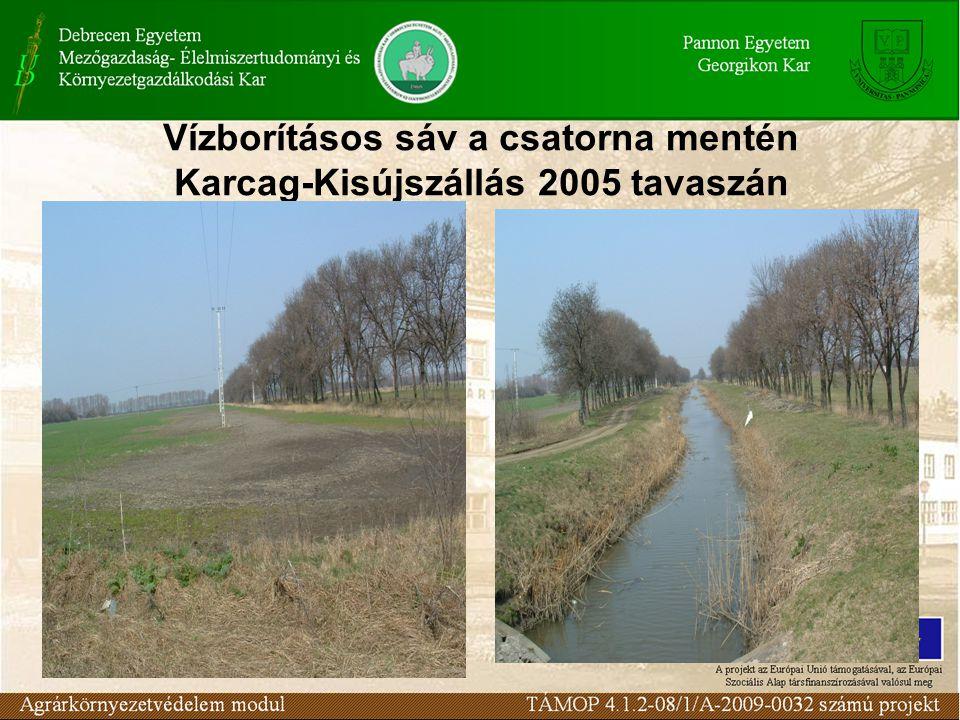 Vízborításos sáv a csatorna mentén Karcag-Kisújszállás 2005 tavaszán