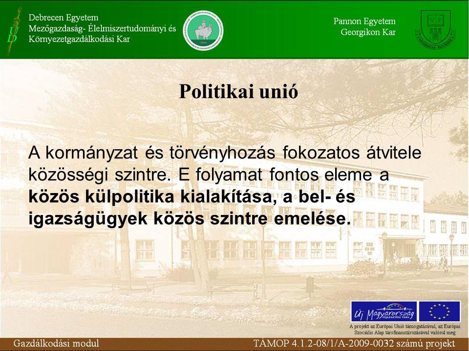 Politikai unió A kormányzat és törvényhozás fokozatos átvitele közösségi szintre.