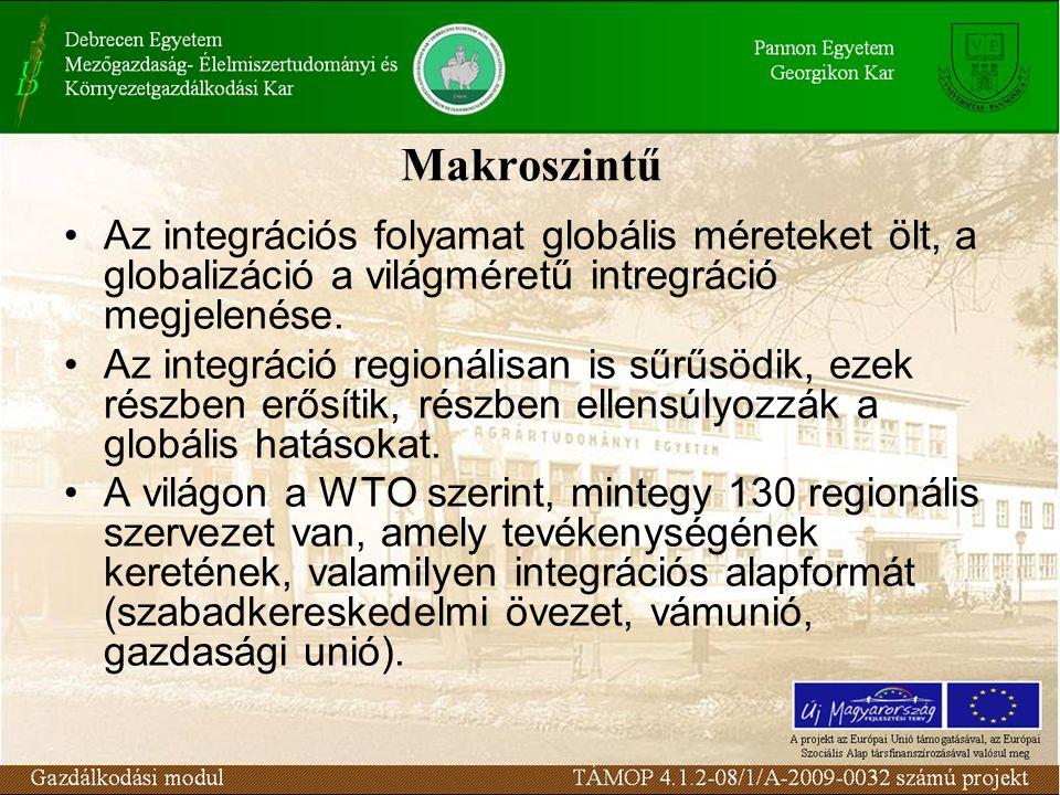 Makroszintű Az integrációs folyamat globális méreteket ölt, a globalizáció a világméretű intregráció megjelenése.