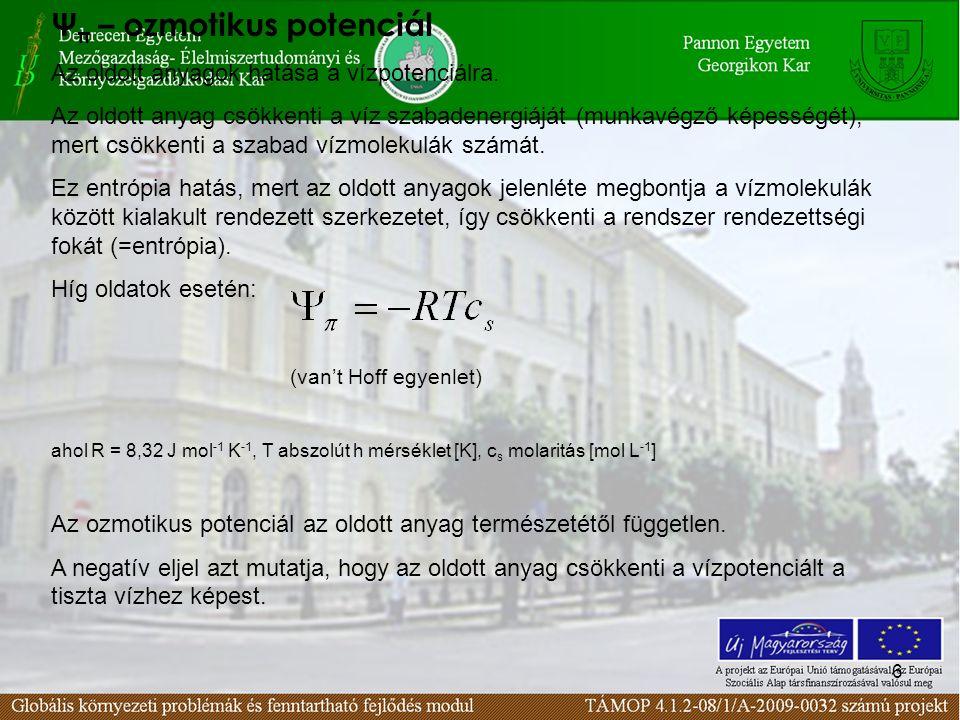 6 Ψ π – ozmotikus potenciál Az oldott anyagok hatása a vízpotenciálra.