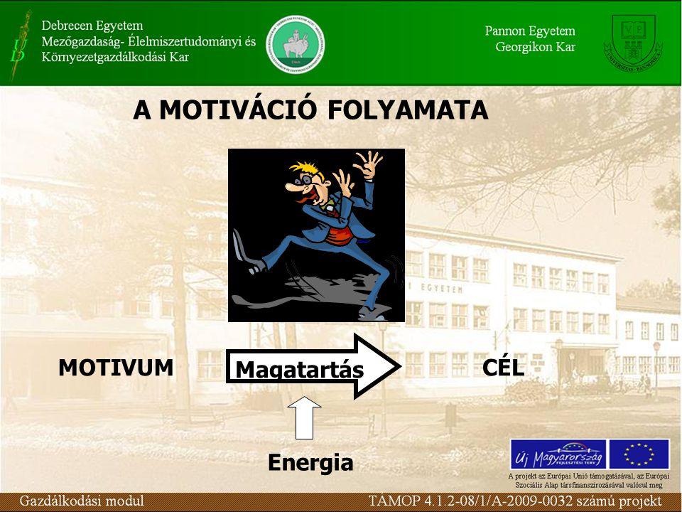 MOTIVUM Magatartás CÉL Energia A MOTIVÁCIÓ FOLYAMATA