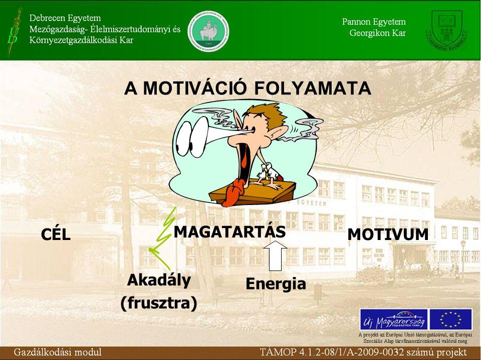 CÉL MAGATARTÁS MOTIVUM Energia Akadály (frusztra)