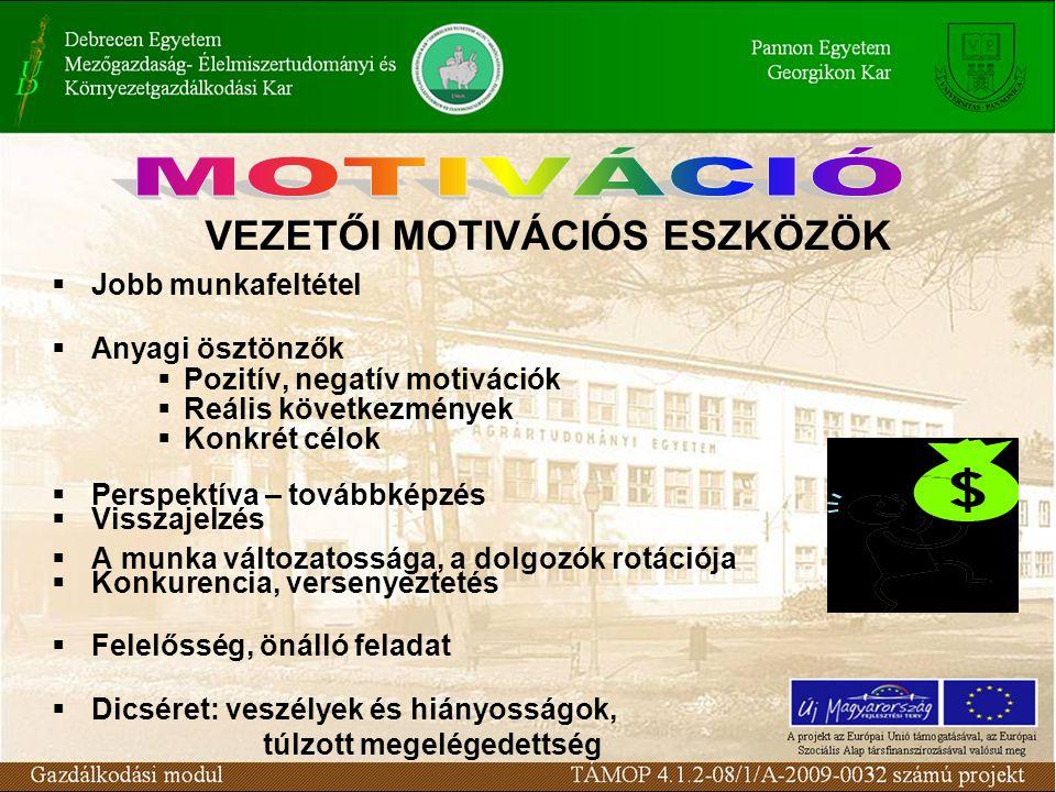 VEZETŐI MOTIVÁCIÓS ESZKÖZÖK  Jobb munkafeltétel  Anyagi ösztönzők  Pozitív, negatív motivációk  Reális következmények  Konkrét célok  Perspektív