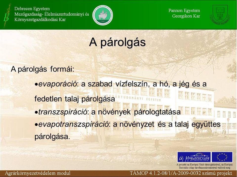 A párolgás A párolgás formái:  evaporáció: a szabad vízfelszín, a hó, a jég és a fedetlen talaj párolgása  transzspiráció: a növények párologtatása