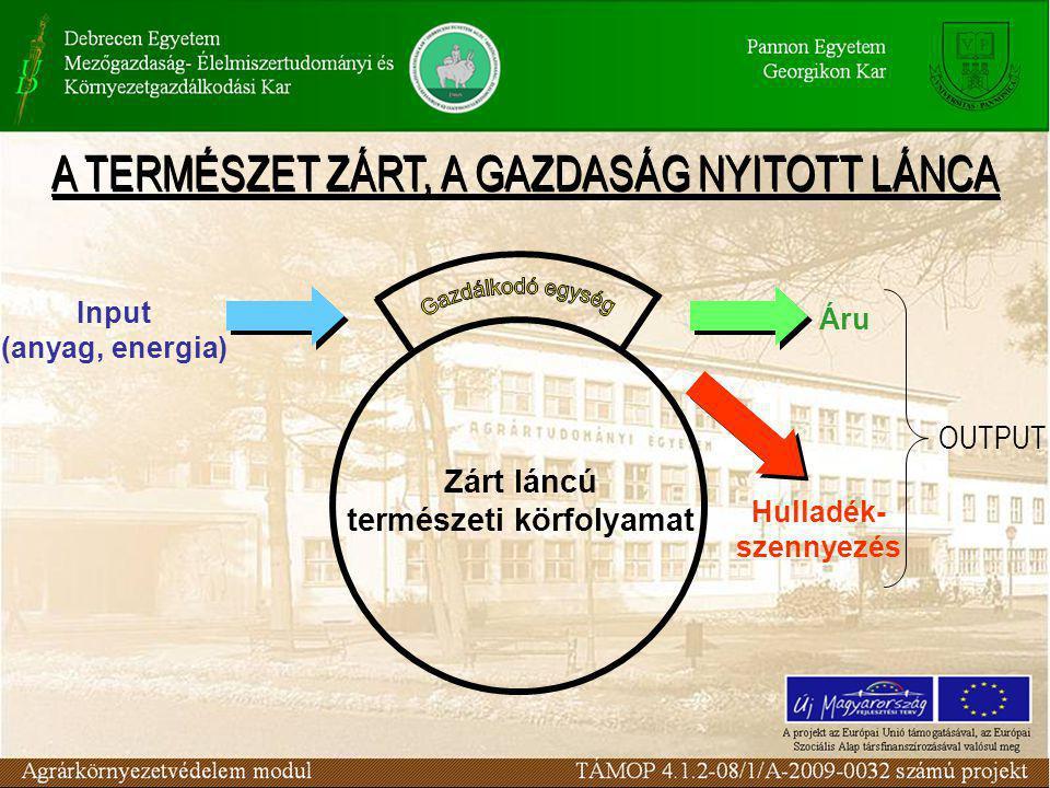 Áru Input (anyag, energia) Hulladék- szennyezés OUTPUT Zárt láncú természeti körfolyamat A TERMÉSZET ZÁRT, A GAZDASÁG NYITOTT LÁNCA
