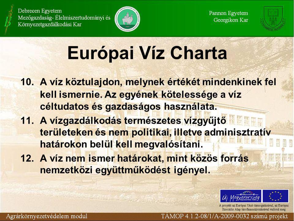 Európai Víz Charta 10.A víz köztulajdon, melynek értékét mindenkinek fel kell ismernie.