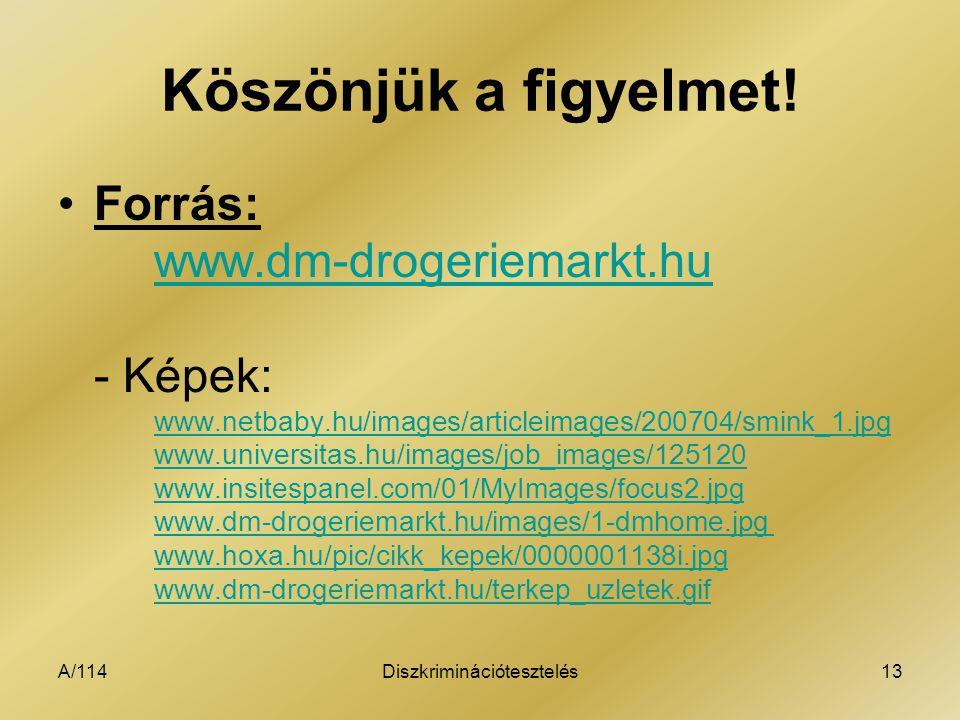 A/114Diszkriminációtesztelés13 Köszönjük a figyelmet! Forrás: www.dm-drogeriemarkt.hu - Képek: www.netbaby.hu/images/articleimages/200704/smink_1.jpg